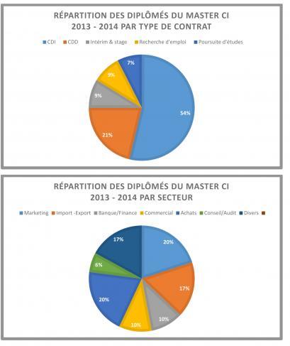 Bilan Insertion Pro Master CPEI 2013 14
