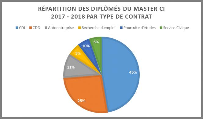 Graphique du bilan master CI 2018 par type de contrat