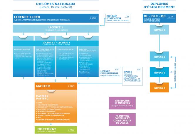 Schéma de formation Inalco mai 2020