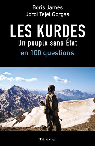 Un homme kurde armé d'une kalachnikoch debout face aux montagnes désertiques