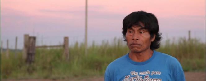 Desterro Guarani, photographie d'un homme regardant l'horizon