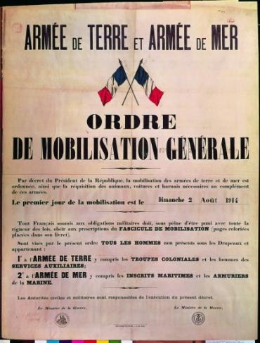 Appel à mobilisation avec drapeaux français