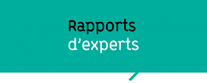 Rapports d'experts