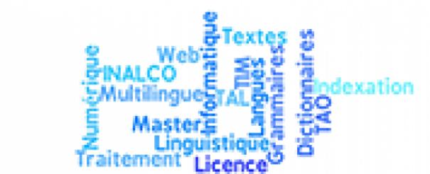 logo département TIM