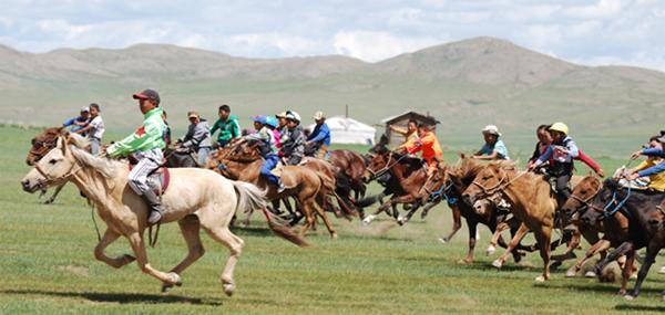 Mongolie, course de chevaux à l'occasion du Naadam