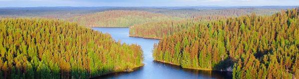 Le parc national de Repovesi, à Kouvola en Finlande