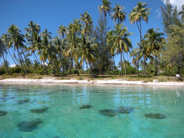 Plage, Tahiti