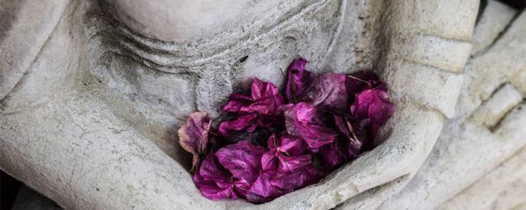 Pétales de fleurs déposés dans les mains d'une statue bouddhique en pierre