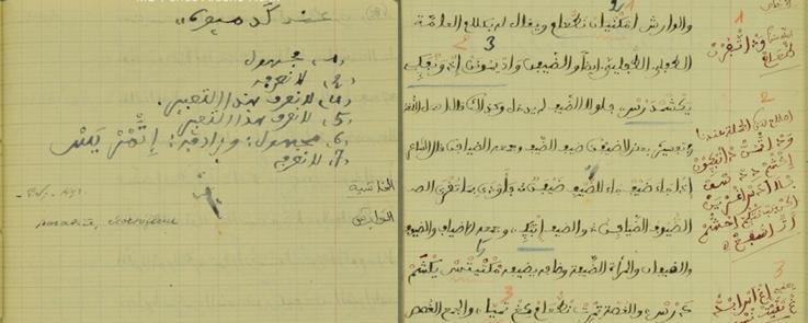 Copie d'une page du manuscrit d'Ibn Tunart : Volume I, folio n°58