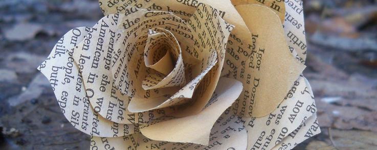 Rose en lettres