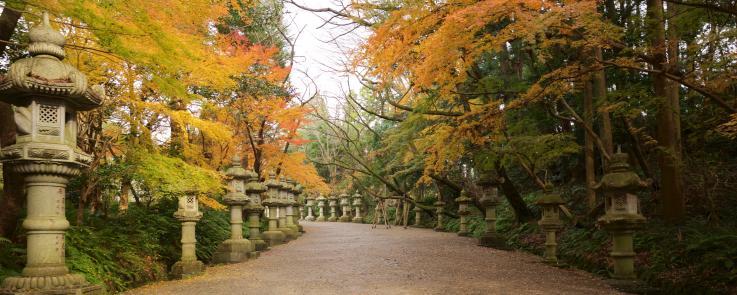Entrée d'un temple à Shimane, bordée de feuillages d'automne