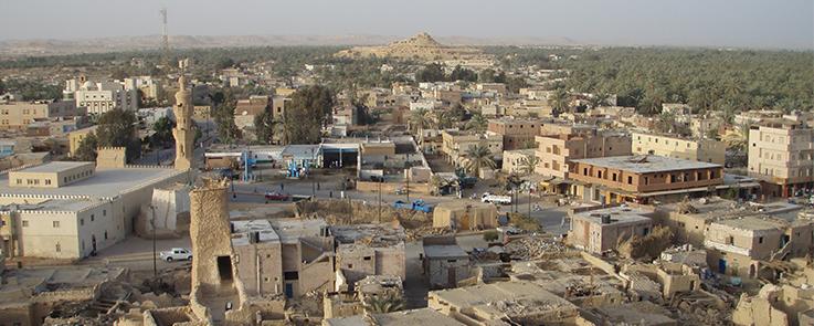Vue panoramique de l'oasis de Siwa en Egypte