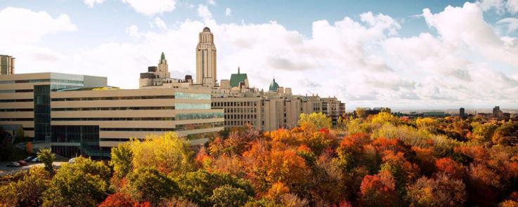 Université de Montréal (UdeM) sous les couleurs d'automne (DR)