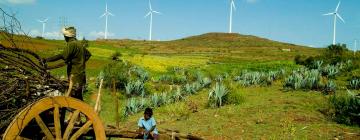 Un agriculteur avec un enfant, une charrette sur une colline verdoyante