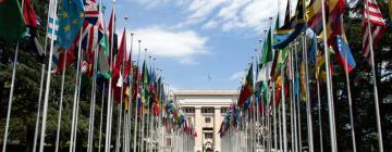 Drapeaux Nations unies